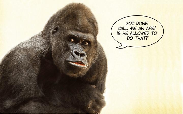 God done call me an ape!